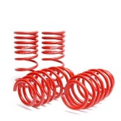 SKUNK2 LOWERING SPRINGS, 12-14 HONDA CIVIC SI
