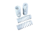 TRUHART LOWERING SPRINGS 16-19 10TH GEN CIVIC (ALL EXCEPT FK8)